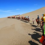 敦煌鸣沙山驼队行驶沙漠中